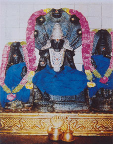 How to worship Rahu or Raghu- Northern Node of the Moon
