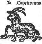 Makara Rasi-Capricorn