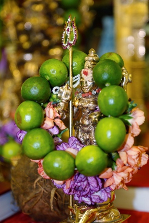 Shoolini Durga Japa Homa-Protects from enemies, secures all the
