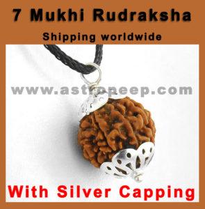 7 Mukhi rudraksha- Buy here