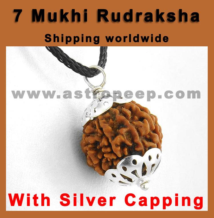 Seven Mukhi Rudraksha- For Shani Sade Sati and Shani Dhaiyya