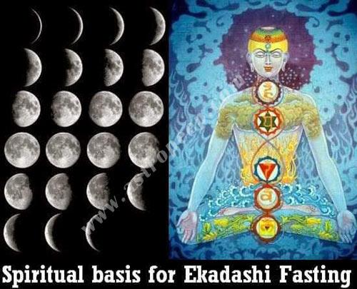 Ekadashi fasting